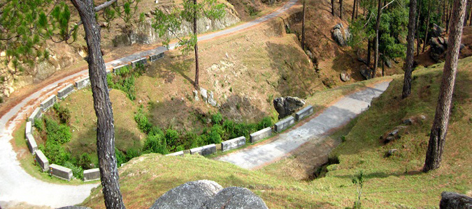 New Delhi to Ranikhet Car Rental Services - Best Deal