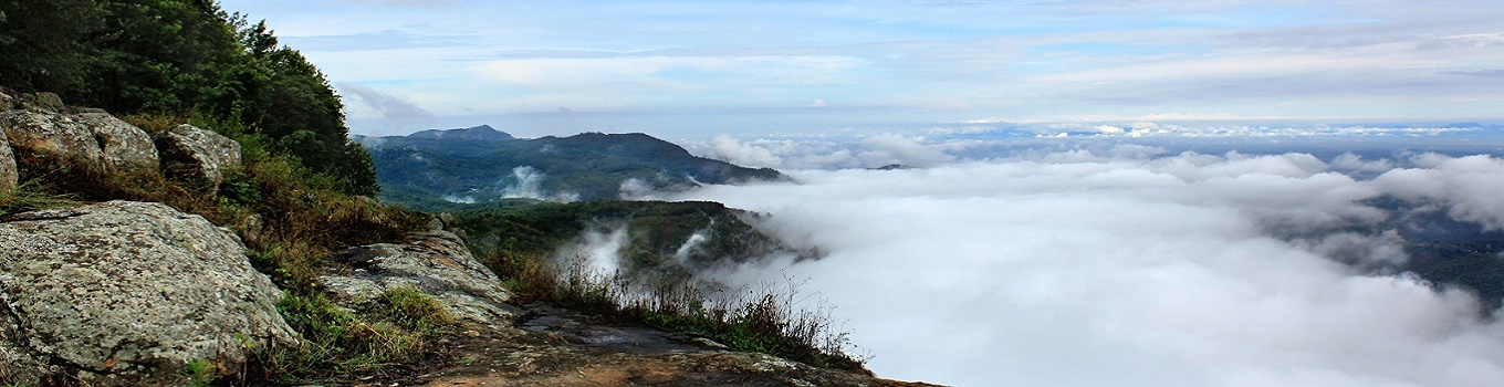 Best Places to visit in Yercaud