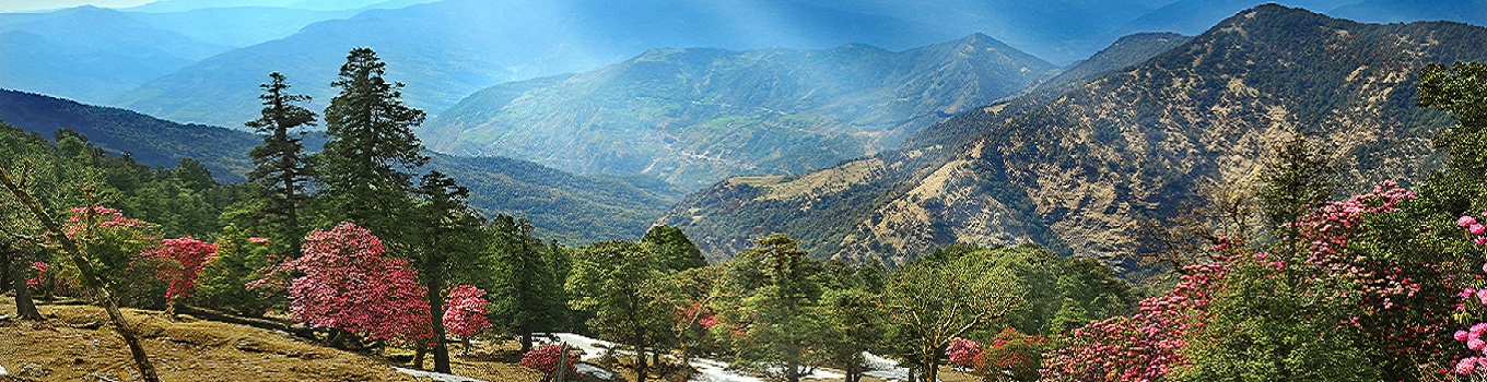 Best Places to visit in Mukteshwar